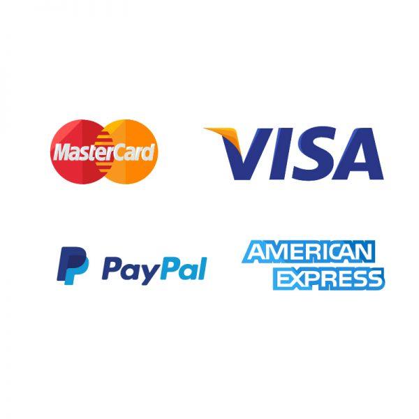 Pago seguro autorizado con tarjeta